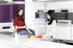 Zwei Freunde, die Nahrung zubereiten Stockbild