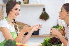 Zwei Freundinnen, die in der Küche beim Haben eines Vergnügensgespräches kochen Freundschaft und Chef-Cook-Konzept Stockfotografie