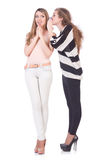 Zwei Freundinnen lokalisiert Lizenzfreie Stockfotografie