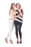 Zwei Freundinnen lokalisiert Lizenzfreie Stockfotos