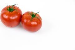Zwei frische Tomaten mit Wassertropfen stockfoto