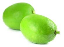 Zwei frische Zitronen Stockbilder