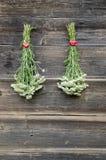 Zwei frisches Yarrow Achilea-millefolium medizinisches Krautbündel Lizenzfreie Stockfotos