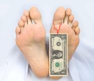 Zwei Fuß Leiche mit Banknote ein Dollar Stockbild