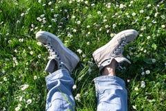 Zwei Fuß unter den Gänseblümchen Stockbilder