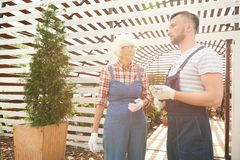 Zwei Gärtner im Sonnenlicht lizenzfreie stockfotografie