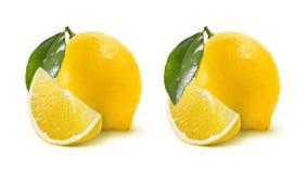 Zwei ganze Zitronenwahlen lokalisiert auf weißem Hintergrund lizenzfreies stockfoto