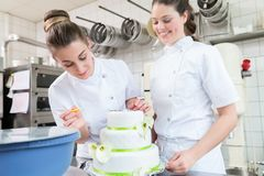Zwei Gebäckbäcker, die großen Kuchen verzieren lizenzfreie stockbilder