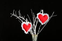 Zwei geformte rote Nadelkissen des Herzens auf einem Baumast stockbild