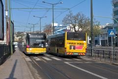 Zwei gelbe Busse in Lissabon lizenzfreies stockfoto