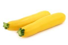 Zwei gelber Zucchini Lizenzfreies Stockbild