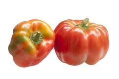 Zwei Gemüsepaprikas Lizenzfreie Stockfotografie