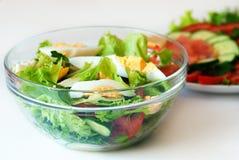 Zwei Gemüsesalate Stockfotografie