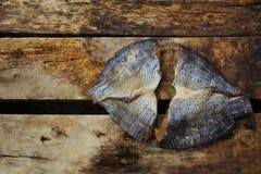 Zwei gesalzene Fische auf dem alten Holz Stockfotografie