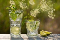 Zwei Gläser Sodawasser auf einem alten Brett, auf der Natur Stockbild