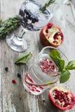 Zwei Gläser Wasser mit Eis, Rosmarin, Minze, Granatapfel und b Stockbilder