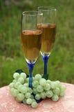 Zwei Gläser weißer Wein u. Trauben Stockbild