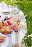 Zwei Gläser Wein und Frucht Essen auf grünem Gras und Plaid Frühling und Ferien Platz für Text Stockfoto