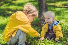 Zwei glückliche Brüder in den gelben Sweatshirts im Herbst parken lizenzfreie stockfotos