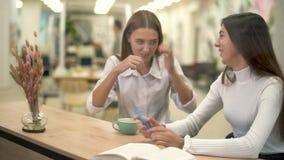 Zwei glückliche Frauen, die im Café der modernen Kunst sitzt am hölzernen Zähler arbeiten stock video