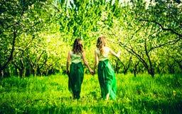 Zwei glückliche hübsche Mädchen, die auf die Apfelbäume gehen, arbeiten im Garten Stockfoto