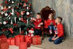 zwei glückliche Jungen am festlichen Unterschied von Tannenbäumen betrachten die Geschenke lizenzfreie stockfotos