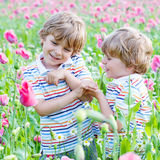 Zwei glückliche kleine blonde Kinder auf dem blühenden Mohnblumengebiet Lizenzfreies Stockbild