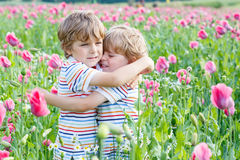 Zwei glückliche kleine blonde Kinder in blühender Mohnblume Stockbild
