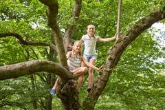 Zwei glückliche Mädchen, die oben Baum im Sommerpark klettern Stockbild