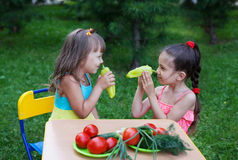 Zwei glückliche Mädchenkinderkinder, die schöne Kleider tragen Lizenzfreie Stockfotos