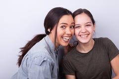 Zwei glückliche Schwestern auf grauem Hintergrund Lizenzfreies Stockbild