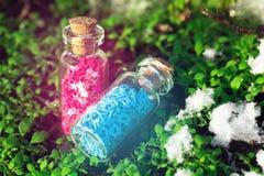 Zwei Glasflaschen mit purpurroten Sternen und blaue Herzen im Wald Lizenzfreie Stockbilder