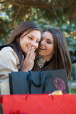 Zwei glückliche Frauen - die Mädchen, die auf dem Einkaufen plaudern, lösen aus Stockfoto