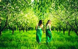 Zwei glückliche hübsche Mädchen, die auf die Apfelbäume gehen, arbeiten im Garten Stockfotografie