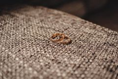 Zwei Goldeheringe auf einem braunen Hintergrund mit dem Rausschmiß Stockbilder