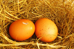 Zwei goldene Eier Lizenzfreies Stockbild