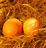 Zwei goldene Eier Stockfoto