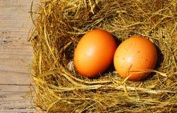 Zwei goldene Eier Lizenzfreies Stockfoto