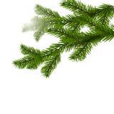 Zwei grüne Fichtenzweige realistisch Weihnachtsfichtenzweige auf Illustration der weißen Weihnacht Lizenzfreie Stockbilder