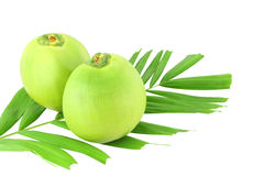 Zwei grüne Kokosnüsse und Blatt Stockfoto
