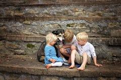 Zwei große Brüder und ihr guter Hund trösten ihre schreiende kleine Schwester lizenzfreie stockfotografie