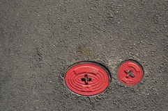 Zwei Hähne auf der Straße Stockfoto