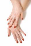 Zwei Hände der eleganten Frau Lizenzfreies Stockbild