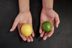 Zwei Hände, die Kalk und Zitrone anbieten lizenzfreie stockfotografie