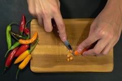 Zwei Hände, die orange Pfeffer schneiden lizenzfreie stockfotos
