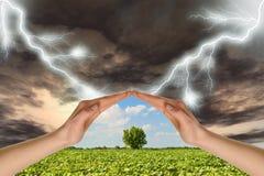 Zwei Hände konservieren einen grünen Baum gegen einen Donner Lizenzfreie Stockfotos