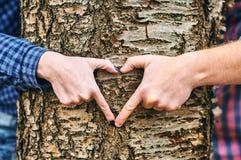 Zwei Hände machen Herz mit Punktfingerbaum Stockfotos