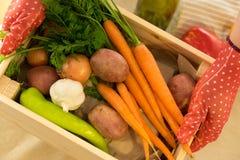 Zwei Hände und Kasten mit frischem organischem Gemüse stockbilder