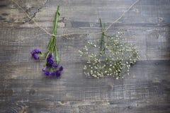 Zwei hängende Blumenbündel Lizenzfreies Stockfoto