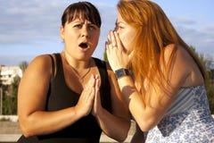 Zwei hübsche erwachsene Mädchen, die ein Gespräch haben Lizenzfreie Stockfotos